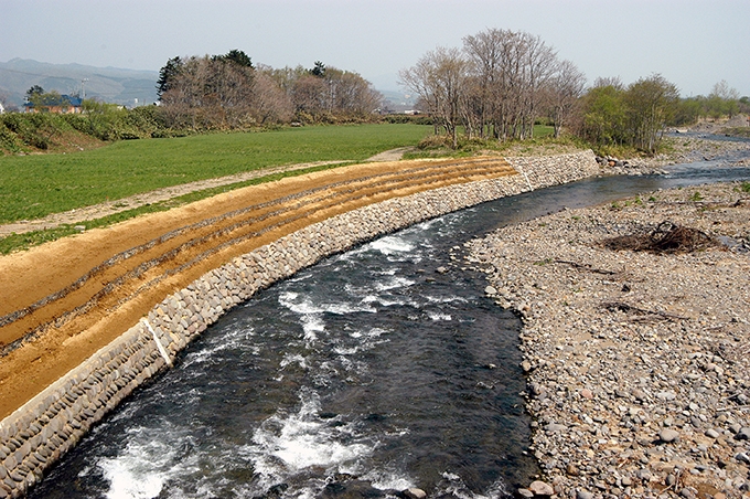 2003-05-03・加工済・砂蘭部川・上砂蘭部橋下流の左岸・DSC_0063