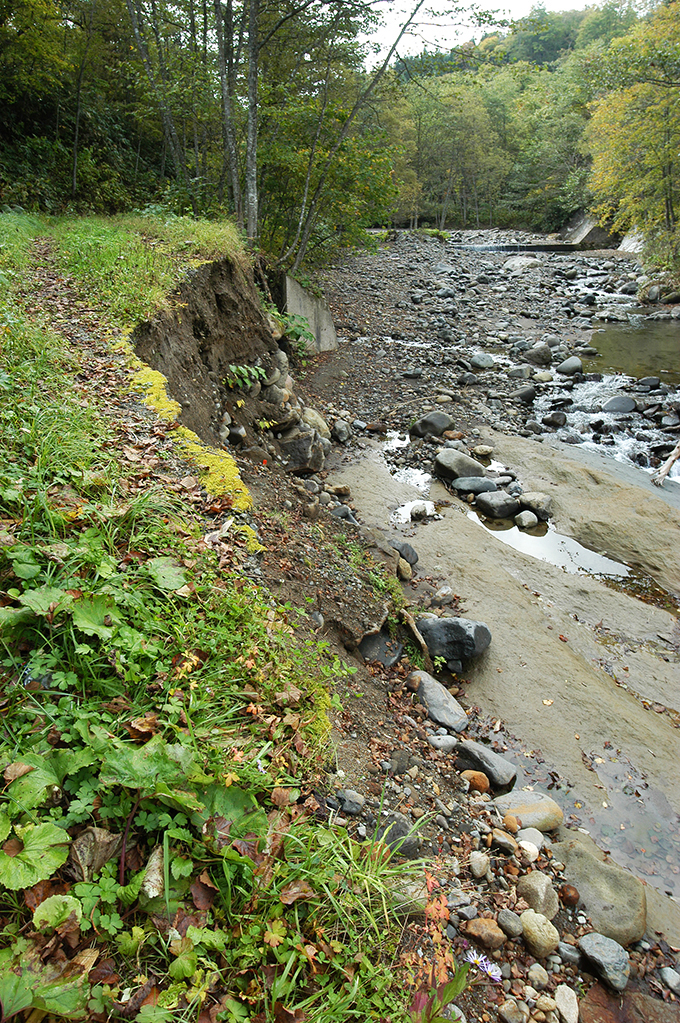 治山ダムの下流では災害が多発していることが分かった。