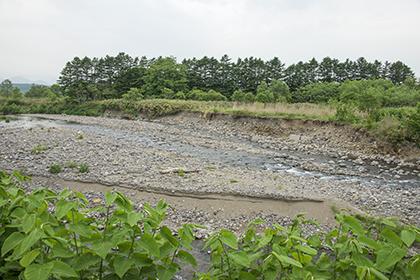 2015-06-02・加工済・砂蘭部川・河岸崩壊・KAZ_0017