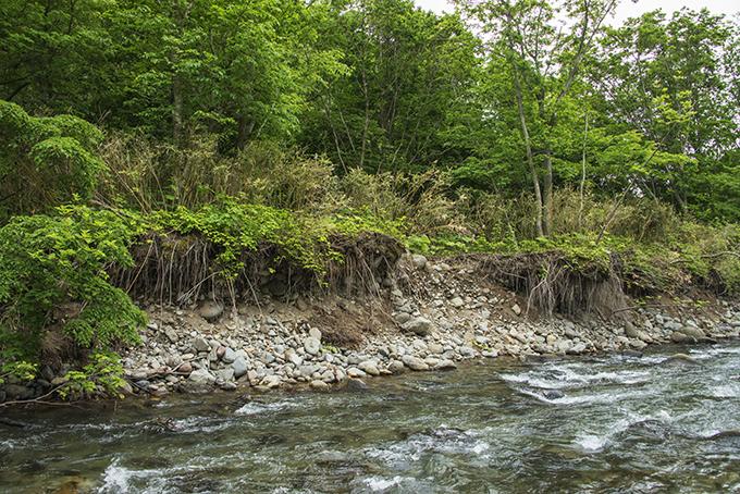 治山ダムや砂防ダムの下流で災害が多発することが分かった。