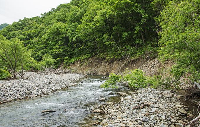治山ダムや砂防ダムの上流でも災害が多発することが分かった。