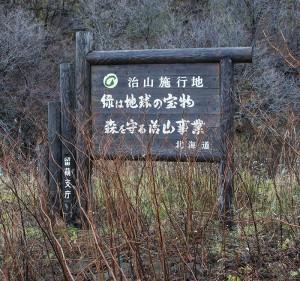 ①・2013-11-21・加工済・丸平の沢川・DSC_0268