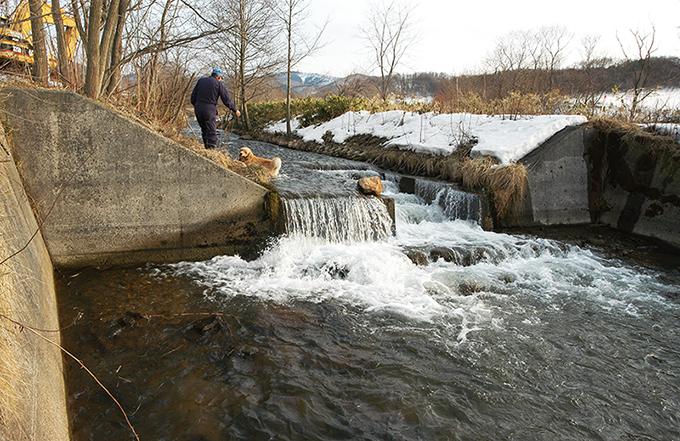 砂利を止めるために設置した堰。さらに上流にはいくつもの堰が設けられている。2004年3月16日