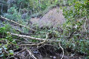 川に面した山の斜面がずり落ちている。砂山崩しの原理と同じで、川底が下がったために、山の斜面がドスンと落ちたわけだ。専門用語でこの山崩れを「山脚崩壊」という。
