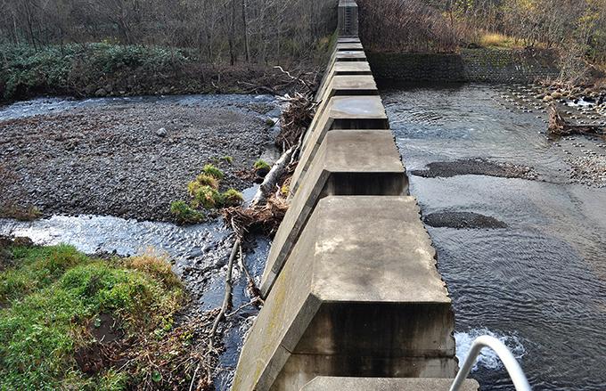 スリットダムの上流側(左)と下流側(右)。スリットの間口には流木がひっかかり、間口を塞いでいるため、砂利が堆積している。流木を止め、砂利を下流に供給するのが目的なのだろうが、机の上の計算とは違って現場はそうはならない。