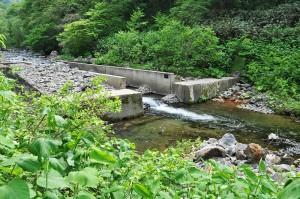 魚道のついた治山ダムだが、一見すれば治山ダムに切り込みを入れたスリット式ダムのようにも見えるが、魚道の出口付近の高さは治山ダムの堤体とほぼ同じ高さになっている。治山ダムに魚道を押し込んだだけの構造なので、流れ出す砂利の量は制限されている。