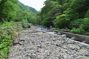 治山ダムの魚道の出口は、治山ダムにたまっている砂利とほぼ同じ高さになっている。こうした引き込み魚道は自然保護団体にはスリット式ダムと勘違いされることがある。