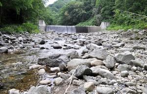 見市川最上流部の治山ダム。治山ダムから下流では川底が下がる。