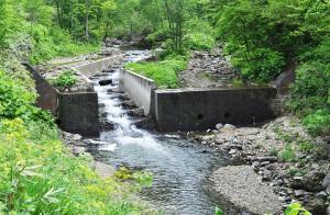 こちらも、治山ダムで、引き込み魚道が取り付けられている。砂利の流下量を制限するので、治山ダムの下流では川底が下がり続ける。