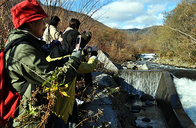 石狩市民ネットワークと合同の現地調査。少し行ったところに治山ダムがあり、大規模に全断面が魚道になっている。すぐ上流にも治山ダムがある。2011年10月27日