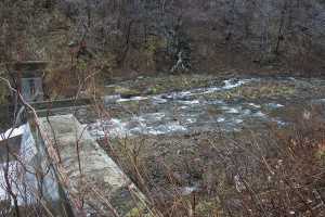 魚道は治山ダムに引き込んでいるだけなので、治山ダムがスリット化されたわけではない。魚道の出口は堤体と同じレベルだ。2013年11月21日