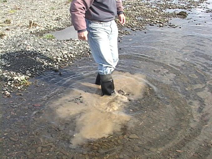 水は透明できれいだが、川底を長靴でグズグズと掘れば、煙のように泥が舞い上がり、大量の泥が堆積していることが分かる。これでは魚類や水生生物は繁殖も生活もできなくなる。こうして川は不毛の川になり果てていく。