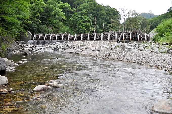 鋼鉄製アングルのスリット式治山ダム。大量の流木がひっかかり、砂利を止めているため、川底が下がっている。大きな石が減少し、こぶし大、小さな石から微細砂が目立つ。