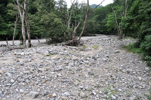 スリット式の治山ダムなのに、スリットが塞がっているために、堆砂域は上流へと広がっている。川底が上昇し、その上を水が蛇行して流れるようになり、山の斜面を浸食して崩壊させて土砂と流木を発生させる。