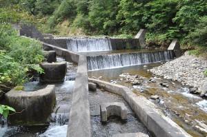 本体と副ダムの二段式になっている治山ダムだ。魚道が取り付けられているものの、入口が水面から出てしまったり、砂利で埋まり水が流れていないこともある。魚道の機能を維持するためには清掃なくしては成り立たない。