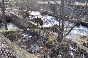 軍川の下流部。このあたりは微細な砂やシルトが大量に堆積している。増水時には大量の泥水が流れ出している痕跡だ。2010年12月10日