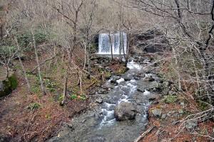 見市川砂防ダム下流の支流浄瑠璃川の治山ダム。サクラマス保護河川でありながら、上流へ遡上することはできない。かつてはたくさんのサクラマスやアメマスがこの治山ダムの下流で産卵していたが、今では壊滅状態。