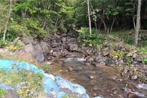 ごく普通の小さな渓流である。巨石が噛み合い、安定した川だ。しかし、この上流に3基の砂防ダムがある。微細砂・シルトが大量に流れ出せば、これらの巨石は崩れて流れ出し、土石流が発生する。3基の砂防ダムが土石流の発生の起因となっても、誰も言及しないだろう。この上流の大規模な3基のダムは人の目に届かない山中にあるのだから。