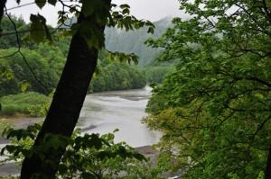 岩知志ダムの上流には岩内園地(公園)があり、沙流川の川幅が異常に広がっていることがよく分かる。岩知志ダムの堆砂域が上流へと広がっている何よりの証拠だ。