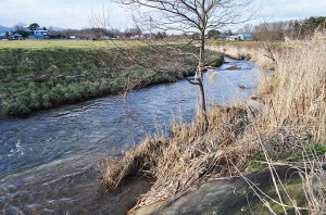 流れゆく先はラムサール条約指定国定公園の大沼だ。これでは大沼の環境は泥で埋まり改変してゆく。2010年12月10日