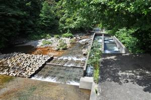 ダム直下では川底の砂利が抜かれて流されるため、本来は水に沈んでいなければならないコンクリートブロックが水面状に露出している。砂防ダムがある限り、ダムの下流では砂利が押し流されて、川底が下がり続けることになる。砂防ダムの脇に魚道が取り付けられている