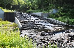 引き込み魚道付き治山ダム。魚道の上端の高さと治山ダムの堤体の高さが同じ事に注目していただきたい。2012年7月27日