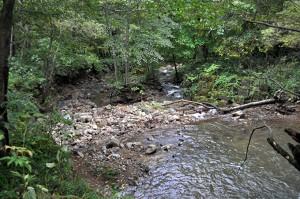 1号砂防ダムの直下では川底が下がり、川岸の根元が抜かれている。これがダムのある川共通の姿である。