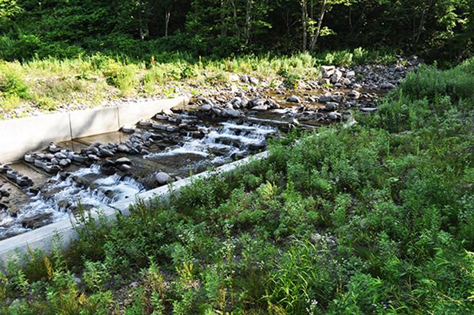 治山ダムの引き込み魚道の上端で砂利が止まっている。治山ダムと同じ高さで砂利を止めている。2012年7月27日