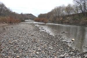 二股沢川が注ぐ羽幌川。羽幌川にも上流にダムがある。ために、二股沢川同様に川底が下がり、川岸の崩れが目立つ。その結果、泥水が発生するので、川底には微細砂やシルト(泥)が目立つ。サケやサクラマス、ウグイやウキゴリなど、多くの魚たちの繁殖は難しくなっていると思われる。