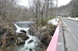 橋のすぐ上に治山ダムがある。すでに砂利で満杯になっており、樹林化している。
