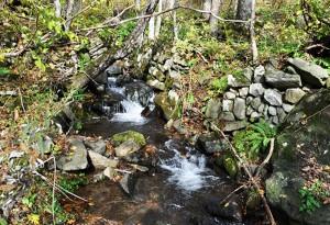 途中に小さな支流があった。川岸は石を積み上げた護岸になっていた。苔むした石が安定した川であることを示している。川底が掘り下がらないから、石を積み上げただけの石積み護岸が今なお残されているわけだ。ところがこの小さな川の上流にでっかい治山ダムが建設された。本当に必要だったのだろうか。2012年10月31日