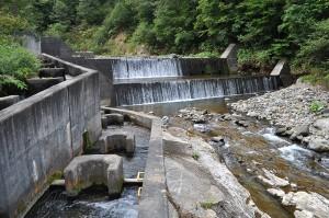 試験的に治山ダムのスリット化が行われることになった。スリット化の前の治山ダムだ。