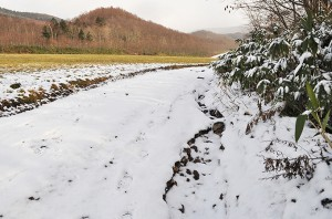 微細な砂・シルトの発生源とされる農地を見に行った。確かに畑地を水が流れ、土が流された痕跡はあるが、どの程度の量が流されたのかは分からない。しかし、農地から出るのは微細な砂やシルトであり、川底を押し上げる砂利ではない。また、土の流出は堰では止めることはできないから、発生源で対策を行えばよいことだ。しかし、河川管理者は微細な砂とシルトを止めるとして、農地を買い上げて沈澱できるような巨大な堰をつくった。2010年12月10日