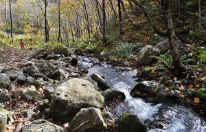 石狩市民ネットワークと一緒にこの小さな川をたどってみると…。2012年10月31日