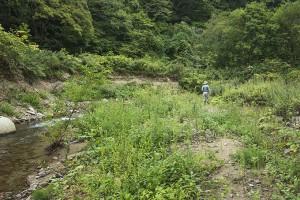 同、スリット化されたが、流れ出すことはなかった土砂は自然の川岸へと戻ってきている。2014年9月10日