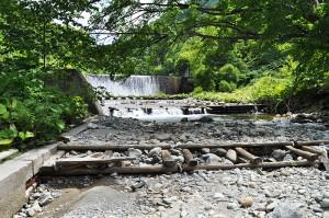 この温泉のすぐ上流に大きな砂防ダムがある。もともと川底にあった構造物が水面から出ている。河床低下が進行していることが読み取れる。