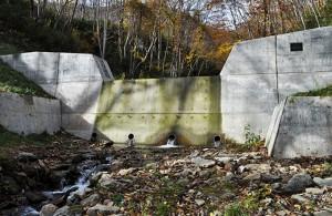 治山ダムが立ちはだかっていた。小さな沢にそぐわないコンクリートの塊だ。水は下部に開いたパイプから流れ出ている。この川にはオショロコマやアメマス、カジカが生活していただろうに…こんなパイプでは上ることすらできないだろう。2012年10月31日