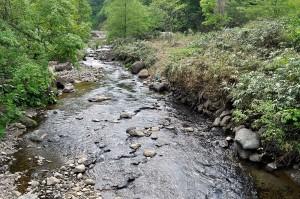 治山ダムのスリット化により、砂利が下流へと流れ出し、岩盤が露出していた川底に砂利が蘇った。秋にはこの場所でサクラマスが産卵するのが見られた。