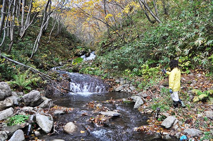 治山ダムの上流を見れば、岩盤の川であり、石は苔むし、安定した川であることを示している。治山ダムを建設しなければならない根拠はなんなのであろうか。税金のムダ使いの実に不可解な治山ダムである。  今後、治山ダムが原因となって小さな川が壊れていき、土砂災害が発生することだろう。その時に治山ダムの効果を謳うつもりなのだろう。しかし、自作自演の災害興しの仕掛けである。災害が発生した場合には、しっかりと検証していただきたい。2012年10月31日