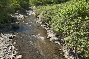 たくさんある治山ダムのうちの一番下流にある治山ダムだけをスリット化しただけだったので、たまっていた砂利が抜け切ったら、再び砂利がなくなり、岩盤の露出が広がり始めた。これではサクラマスは産卵できない。
