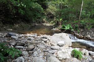 上の治山ダムがスリット化されて、多様な砂利が流れてきて、良好な川が蘇ってきた。2014年9月10日