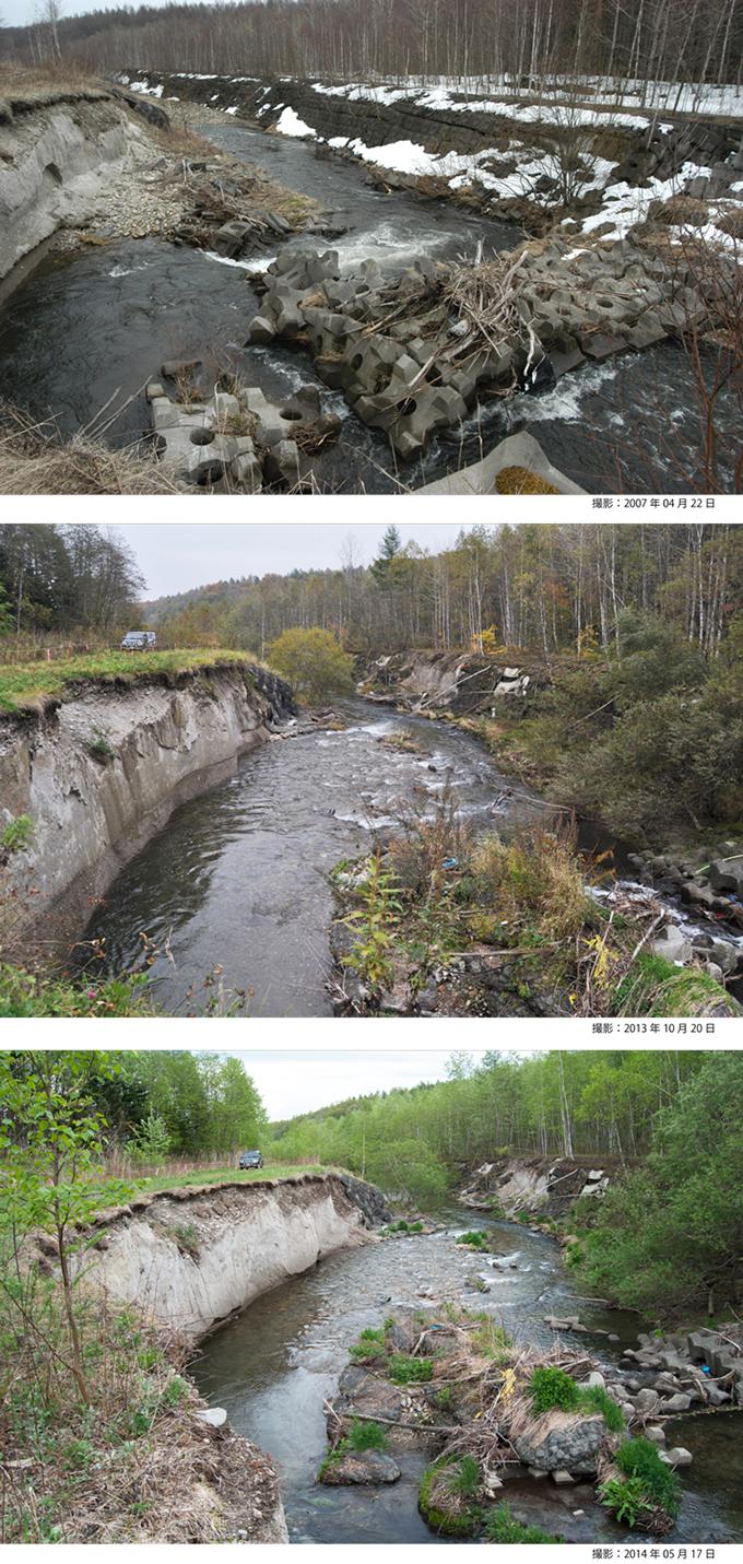 川岸崩壊は道路まで崩壊させるに至り、現在、道路は山側に迂回させてある。ここまで川底が掘り下がり、川岸が崩れると、補修するために投入される血税は悪戯に膨らみ続けることになる。もうこうした茶番な対策は止めて、原因である砂防ダムを早急に撤去すべきである。(久山川・河岸崩壊の変遷(下流側を望む))