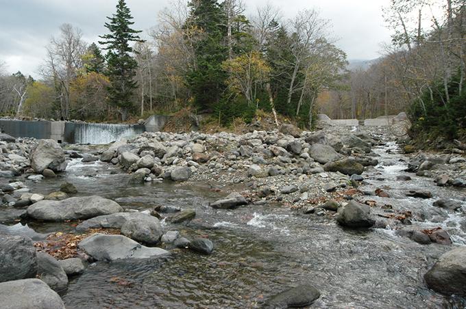 左が本流の岩尾別川、右がピリカベツ川。両方に治山ダムがある。
