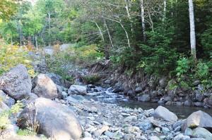 治山ダムがスリット化されても、間口が小さいので川底の低下は続いている。世界自然遺産に指定された川なのに…撮影:2013年10月10日