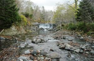 本流の岩尾別川の2基の治山ダムのうちの上の治山ダム。撮影:2009年10月31日