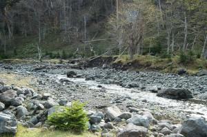 川底が下がり、川に面した山の斜面(左岸)が崩壊し(山脚崩壊)、崩壊は拡大している。(岩尾別川の山脚崩壊と川の石の大きさが小ぶりに…)