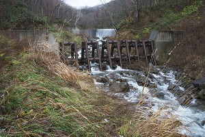治山ダムの中央に鋼鉄製アングルを入れてある。間口が広く見えるが、巨石や流木で塞がれば、砂利も止められ、全面コンクリートの治山ダムと同じになる。メンテナンスが必要な構造である。