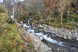 治山ダムの上流を見ていただきたい。手を加えていない上流は苔むした巨石が噛み合って、石が動かないようになっている。手を加えたところは、石が流されやすくなっていること、この違いをよく見ていただきたい。急峻な千代志別川に人が手を加えたことで、今後、災害が多発することだろう。人が手を加えると川はもう手の施しようがなくなるほどに荒れ、暴れることを知っていただきたい。今後も、是非、ご注目をください。2012年10月31日