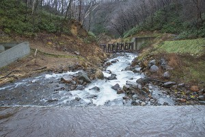 鋼鉄製アングルの入った治山ダムを上流側から見たところ。