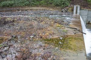 治山ダムには上端まで一杯に砂利が貯められていた。